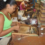 Cigar Roller in Cuba - 15th Habano Cigar Festival