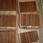 sorted_cigars_15th_habano_cigar_festival