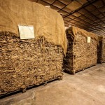 cigar_leaf_fermentation