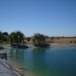 The reservoir at the Vogelzang Vineyard