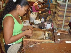 Cigar Roller in Cuba - 15th Habano Cigar Festival