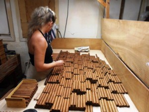 Cigars Freshly Rolled and Being Sorted in Cuba
