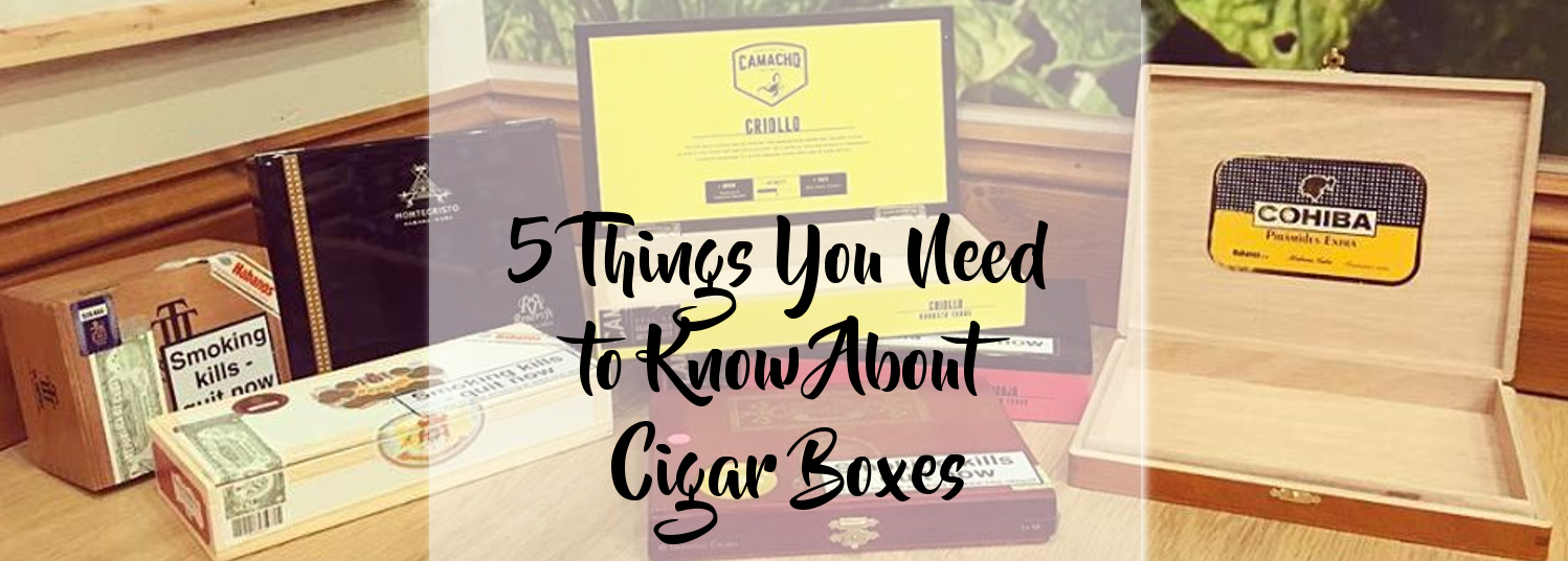 5 Things you need to know about cigar boxes!