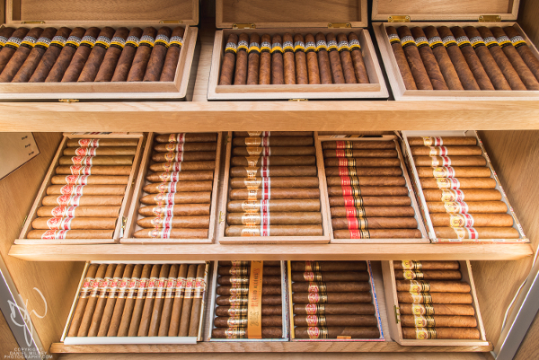 C.Gars Ltd Mayfair Cigar Shop behind the till