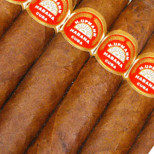 H Upmann Majestic Cheap Cigar