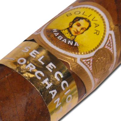 Bolivar Belicosos Finos Orchant Seleccion Cigar