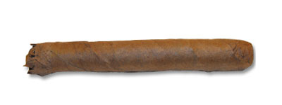 C.Gars Ltd Dutch Blend Wilde Senoritas – 1 Single