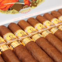 Bolivar Royal Coronas - Orchant Seleccion 2016 Cigar - 1 Single