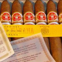 Punch Serie D'Oro No. 1 Cigar (UK Regional Edition - 2008) - Box of 25