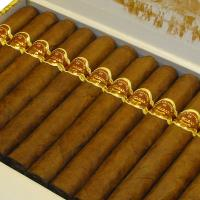 San Cristobal La Fuerza Cigar - Box of 25
