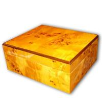 Sombre Humidor – Light Gloss Burl - 25 Cigars Capacity