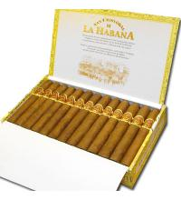 San Cristobal El Principe Cigar - Box of 25