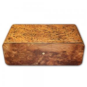 Gentili Briar Wood Olmo - Tobacco Leaves Cigar Humidor – 150 cigars capacity