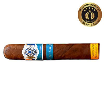 AVO Orchant Seleccion Syncro Robusto Cigar - 1 Single - CHRISTMAS GIFT